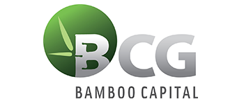 Partner - BCG